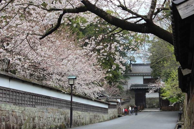 《宮崎:九州南端誕出古老神話》